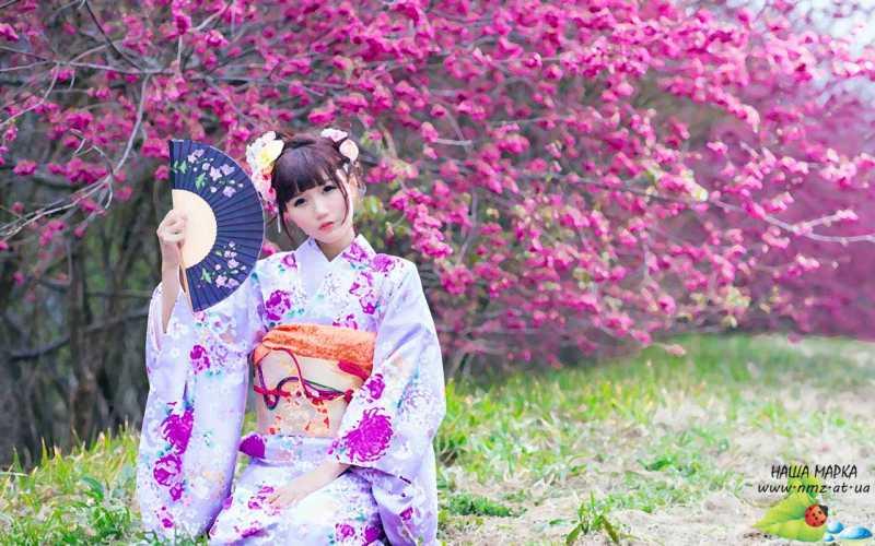 Японское фото 64587 фотография